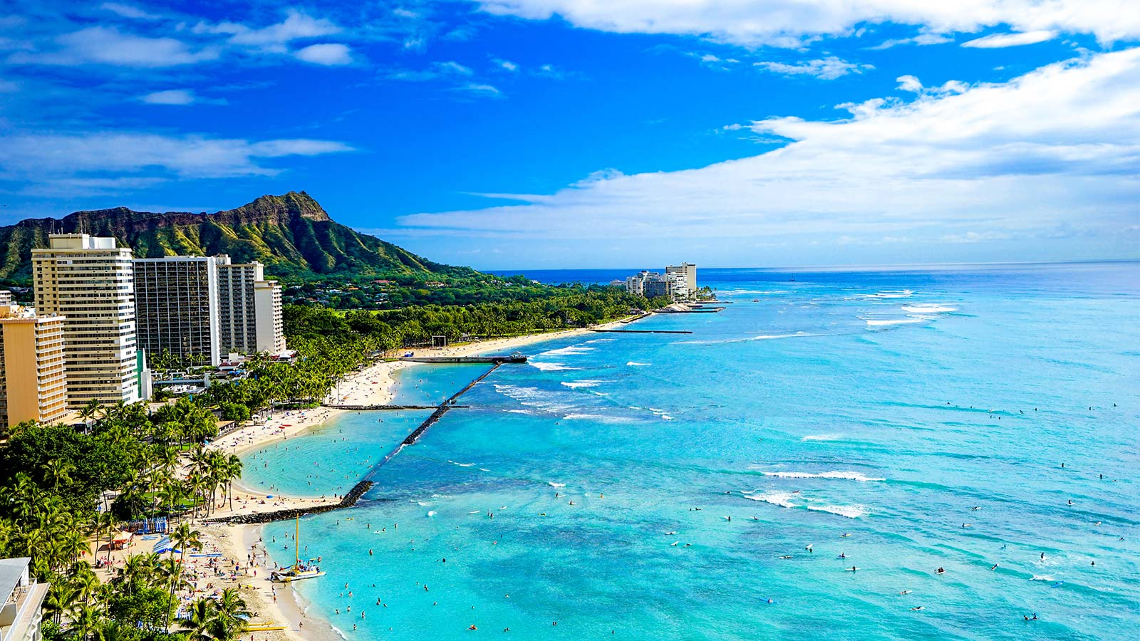 の 現状 ハワイ